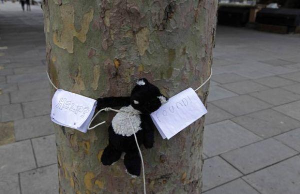 Ursinho de pelúcia é flagrado amarrado a árvore