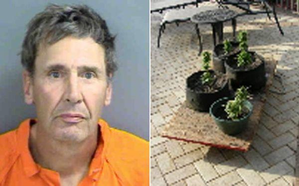 Homem é preso após colocar vasos de maconha para pegar sol