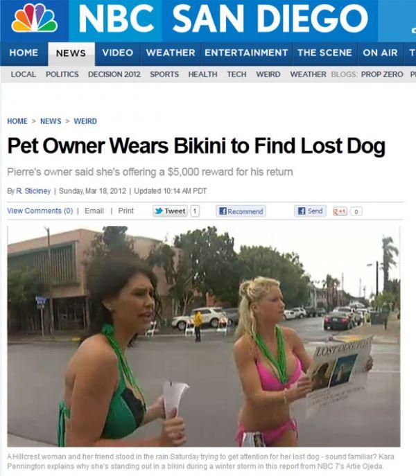Mulher usa biquíni para tentar achar cachorro perdido nos Estados Unidos
