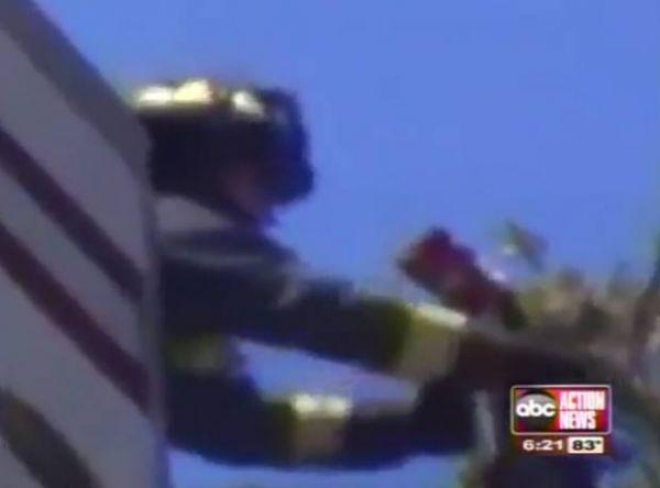 EUA: Gato é flagrado com saco na cabeça no alto de um poste