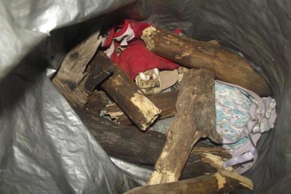 Jovem é encontrada morta em matagal no município de Arraial