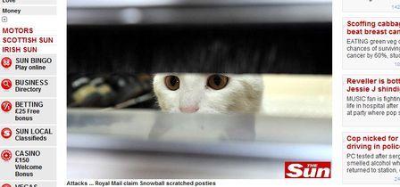 Carteiros não entregam correspondências com medo de de gata