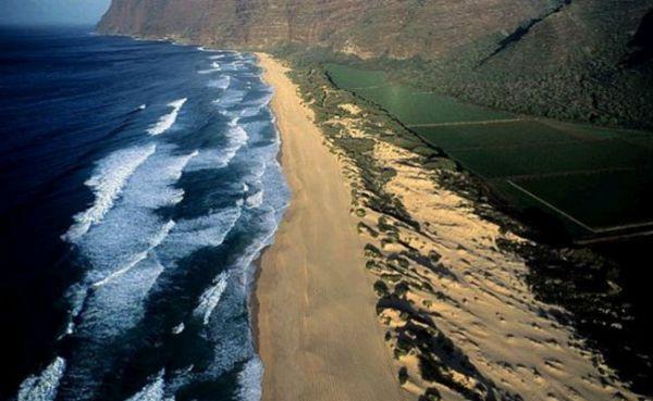 Praias com elefantes, búfalos e areia verde estão entre as mais bizarras de todo o mundo
