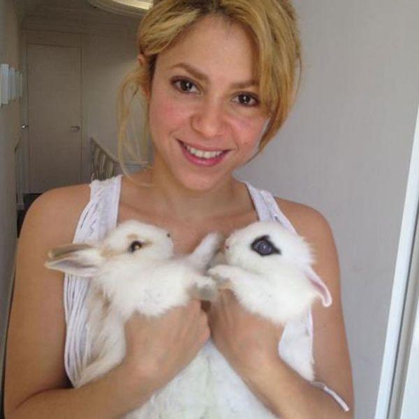 Shakira posa com coelhos e deseja Feliz Páscoa a seguidores