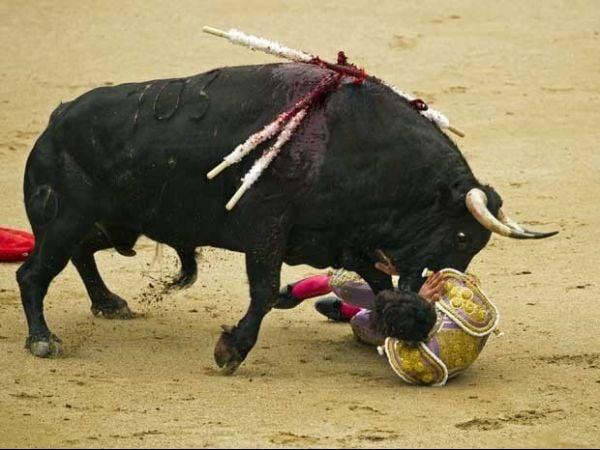 Homem recebe chifrada de touro furioso durante tourada em praça