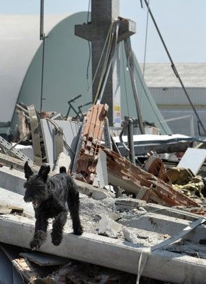 Forte terremoto atinge norte da Itália e mata 10 pessoas