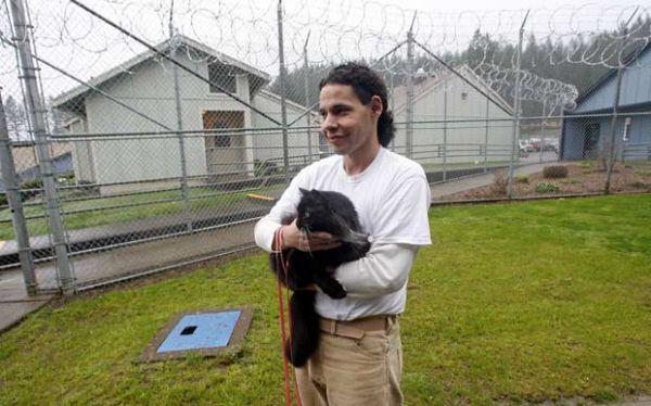 Presídio premite que detentos adotem gatos de estimação