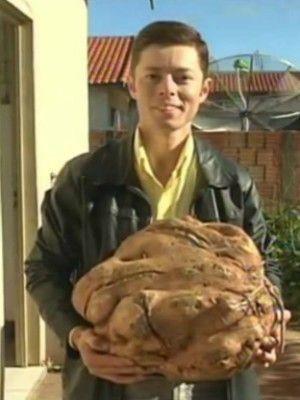 Batata-doce de quase 18 kg é encontrada em horta caseira