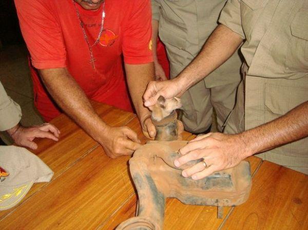 Bombeiros resgatam gato entalado em motor de carro