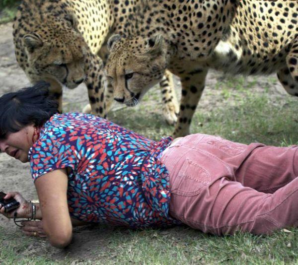 Marido tira fotos da esposa sendo atacada por dois guerpardos