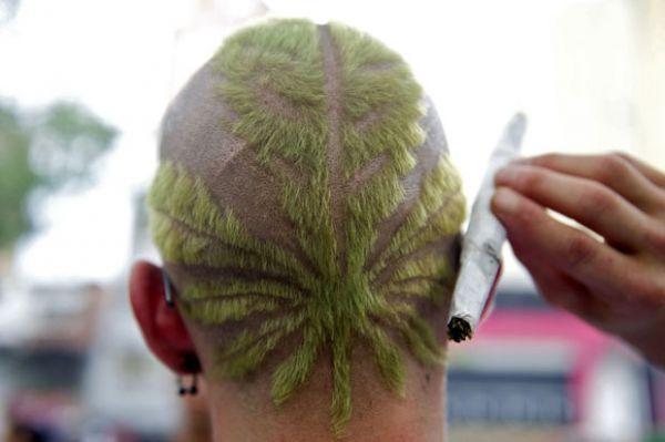 Homem exibe corte de cabelo no formato de planta da maconha