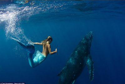 Australiana usa cauda de sereia e nada ao lado de baleia