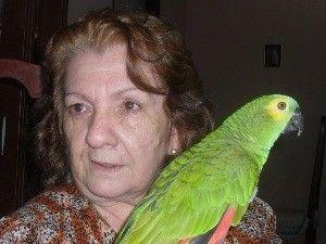 Idosa briga na Justiça para ficar com papagaio que foi do filho assassinado