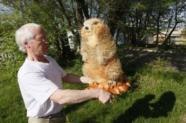 Artista russo usa madeira para criar animais em tamanho real