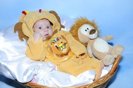 Filho de ex-BBB Priscila posa de leãozinho e já demonstra jeito para modelo