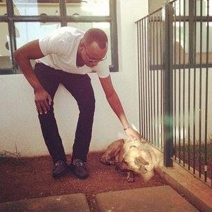 Cadela ferida por produtor de Thiaguinho tem alta