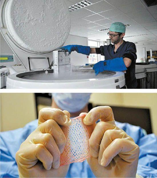 Empresas lucram transformando restos mortais em produtos de saúde