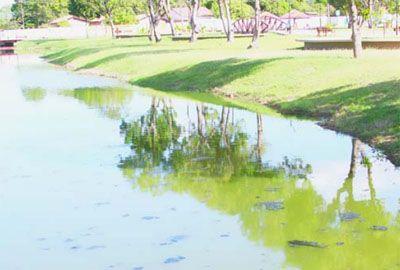 Mesmo com morte, Lagoas ainda são utilizadas para banho