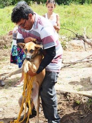 Cão é resgatado após passar uma semana em buraco