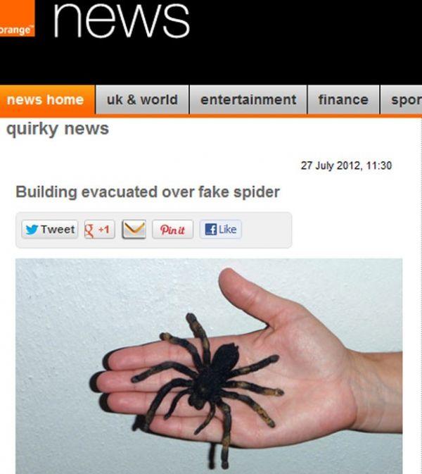 Suíços desocupam prédio comercial após encontrar aranha de plástico