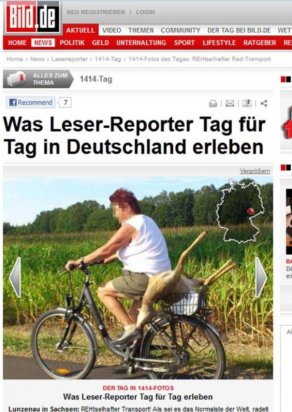 Na Alemanha, mulher é flagrada transportando veado em bicicleta