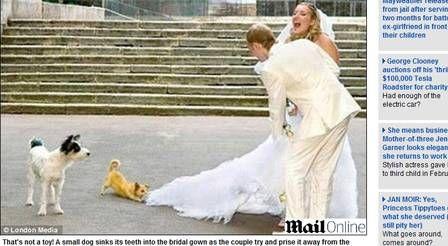 Confira seleção de algumas das piores fotos de casamento