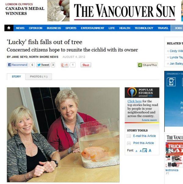 Peixe é encontrado vivo após cair de