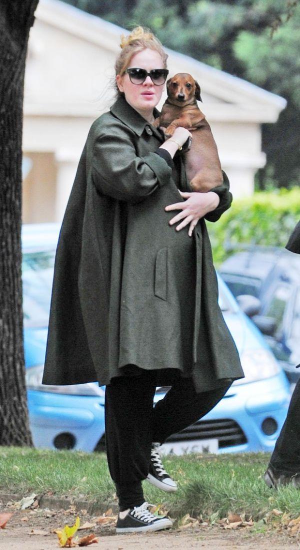 Prestes a dar à luz, Adele passeia com seu cachorro em Londres