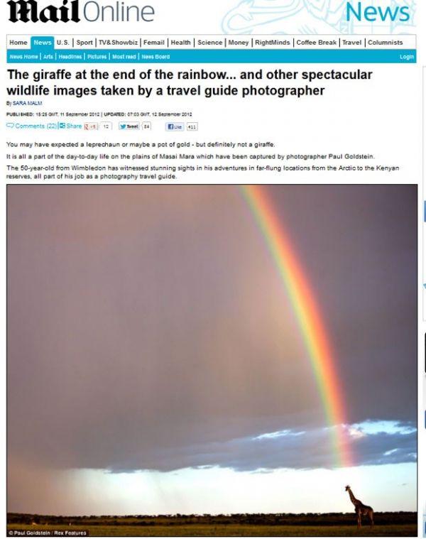 Em vez de pote de ouro, girafa é flagrada no final de arco-íris