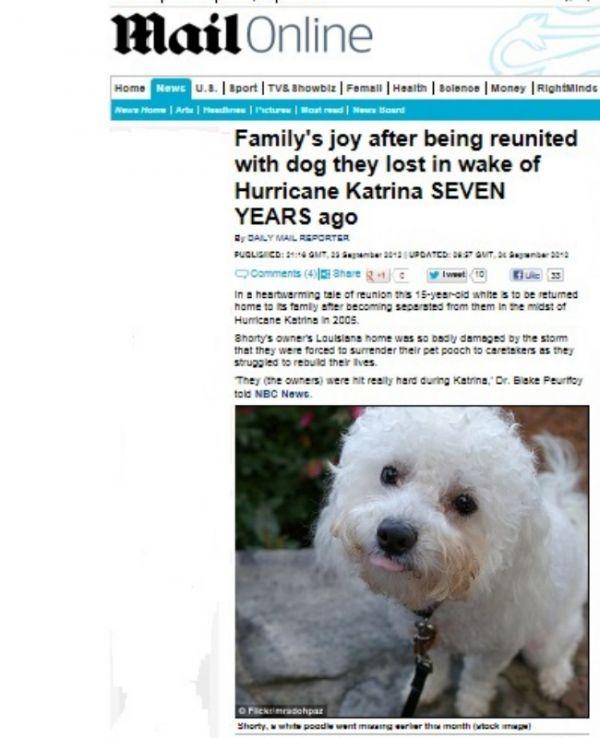 Família reencontra cão idoso que havia perdido em furação há anos