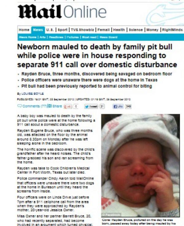 Pit bull mata bebê de três meses enquanto pais discutiam a relação