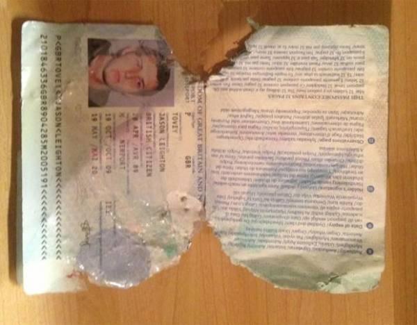 Jogador de rúgbi perde jogo após sua cadela comer seu passaporte