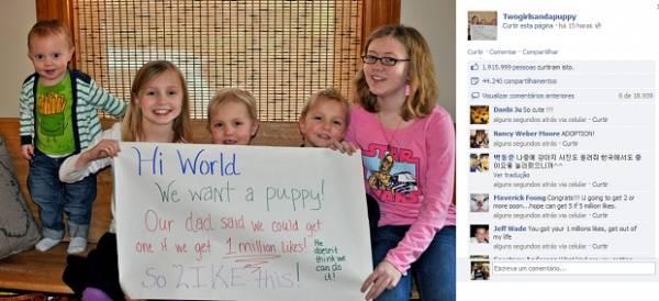 Crianças ganham filhote após conseguirem 1 milhão de likes em sete horas