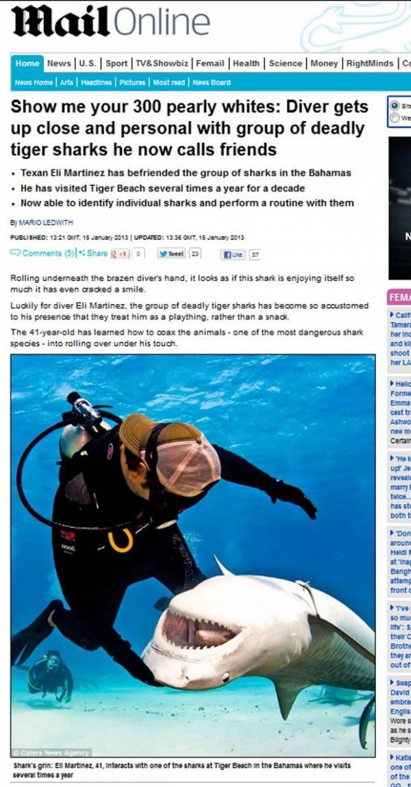 Mergulhador brinca com tubarão e arranca até