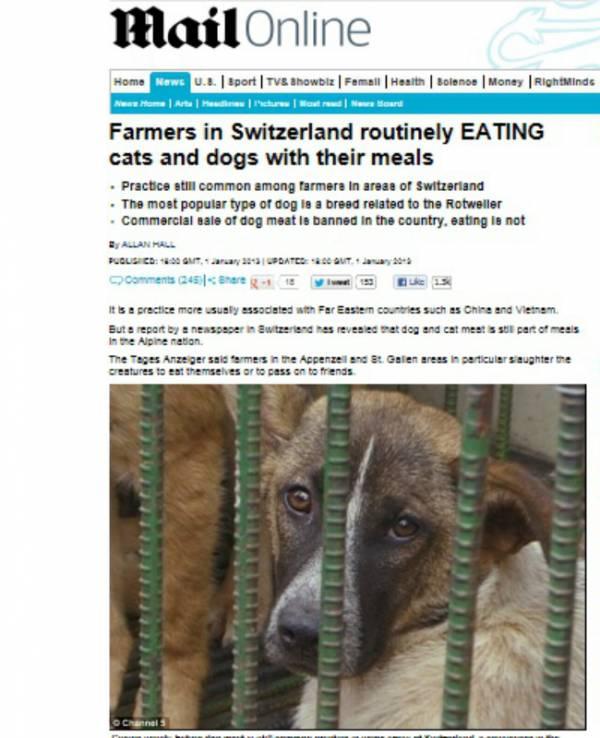 Alta no preço da carne faz fazendeiros criarem cães para alimentação na Suíça