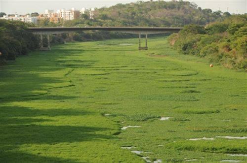Projetos querem evitar poluição no leito do Poti