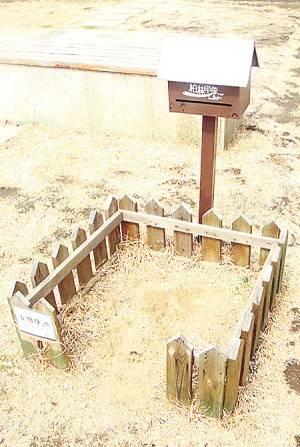 Banheiros públicos para cães são construídos em cidade na China