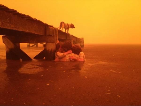Avó escapa com netos de incêndio ao ficar 3 horas na água na Austrália