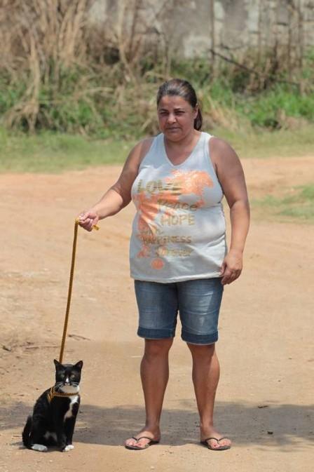 Dona coloca coleira em gato após 27 mortes de animais em 10 dias no RJ
