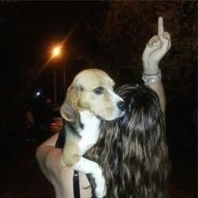 Famosos se mobilizam após resgate de cães de laboratório em São Paulo