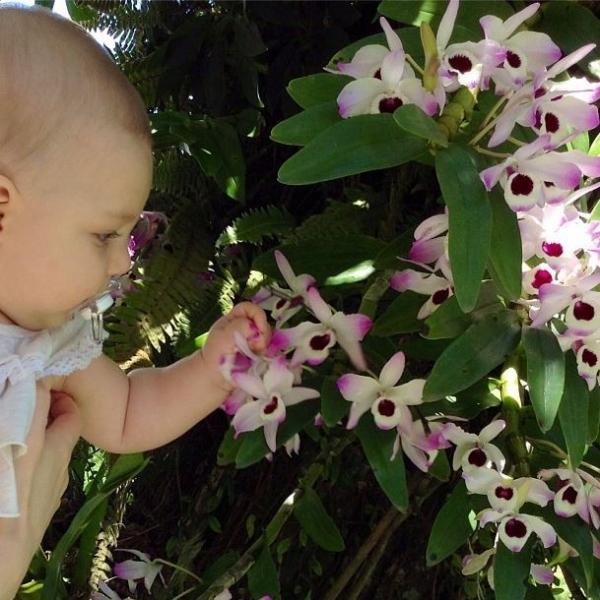 Filha de Sheila Mello aparece de chupeta mexendo nas flores