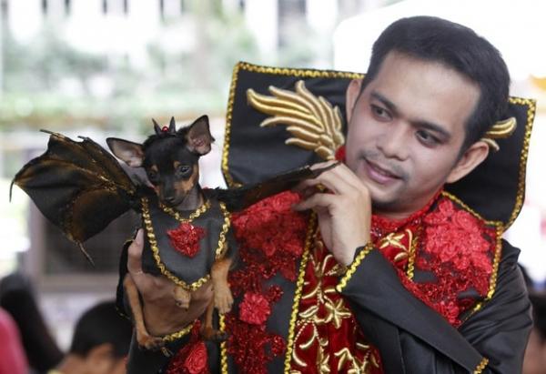 Competição elege melhor cão e gato fantasiado de Haloween nas Filipinas