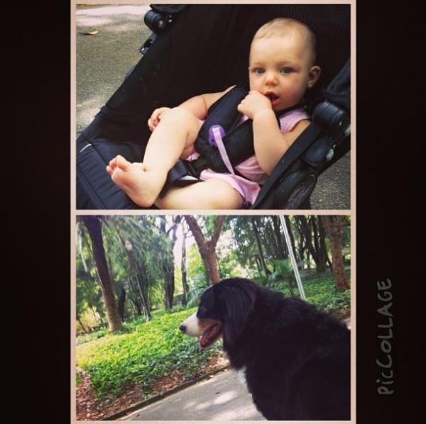 Fernando Scherer mostra a filha com Sheila Melo em passeio com cão