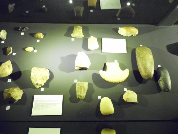 Exposição em Brasília mostra parte do tesouro arqueológico da Serra da Capivara - Imagem 3