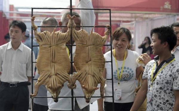 Mais de 60 assadores disputam concurso de churrasco na China