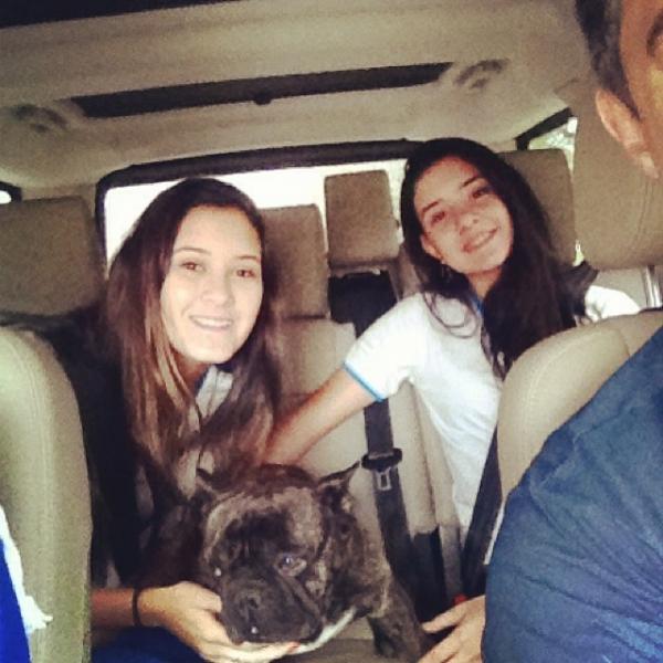 William Bonner leva filhas na escola e cão vai junto: