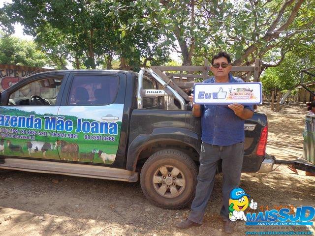Começa a chegada dos fazendeiros e animais para a 25ª Festa do Leite em São José do Divino