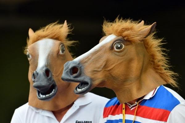 Torcedores usam cabeças de cavalo durante jogo de críquete na Austrália