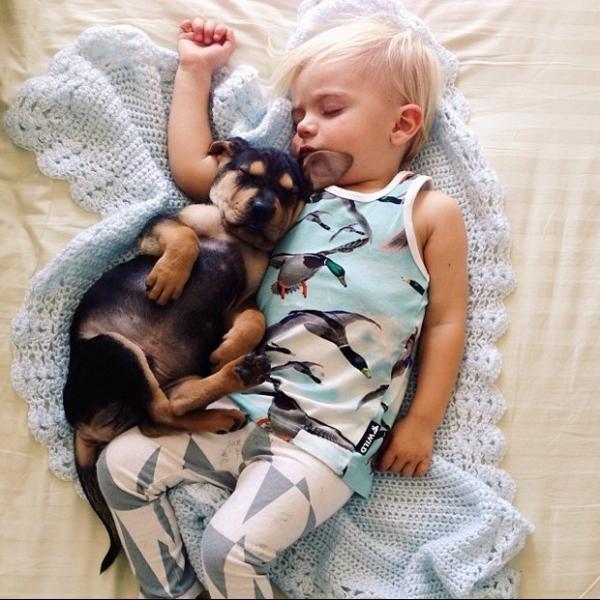 Bebê e cão