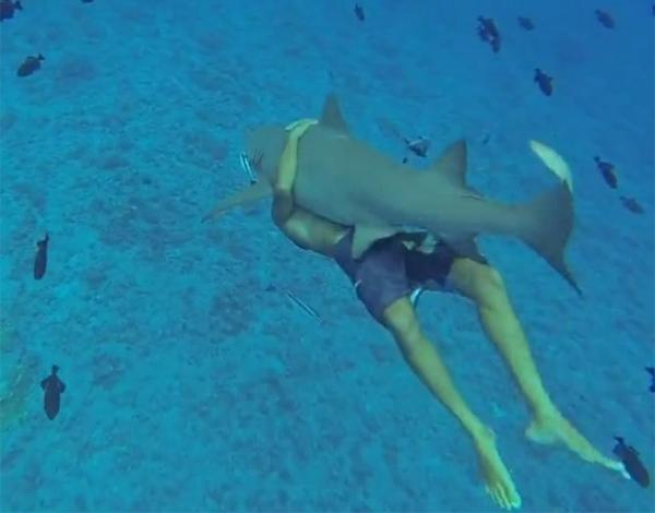 Americano destemido nada abraçado a tubarão de 2,4 m em Bora Bora